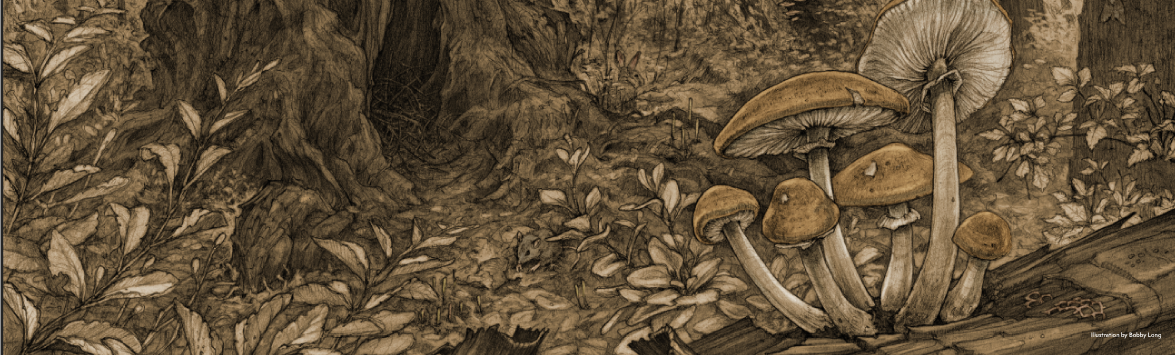 An illustration of the woods with some woodland creatures and mushrooms.